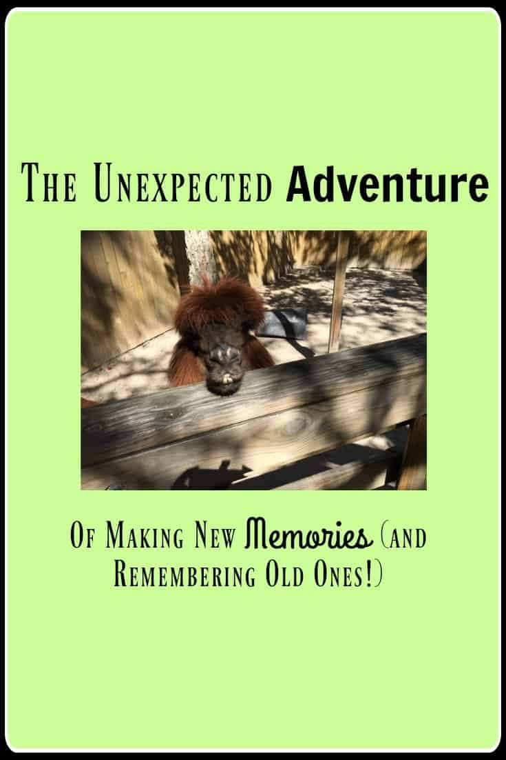 Memories ~ The Unexpected Adventure of New and Old Memories 9