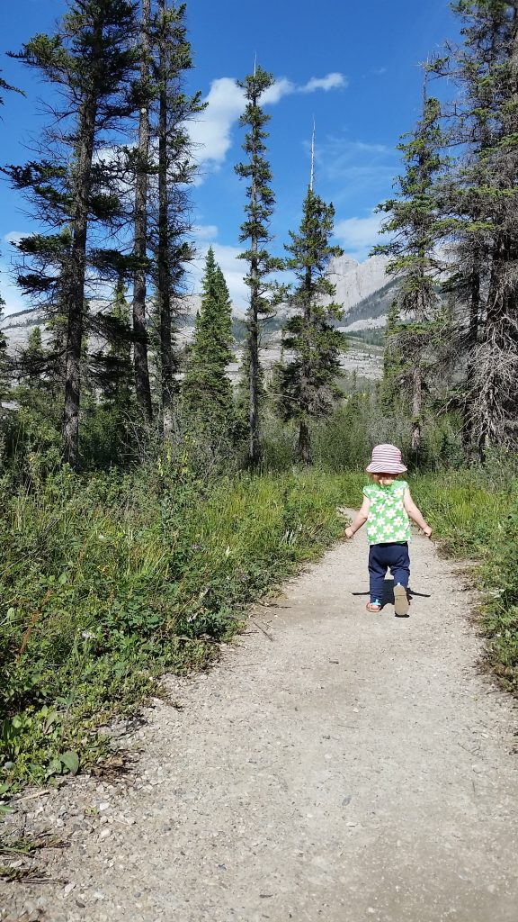 Jasper National Park ~ What You Need to Know 3