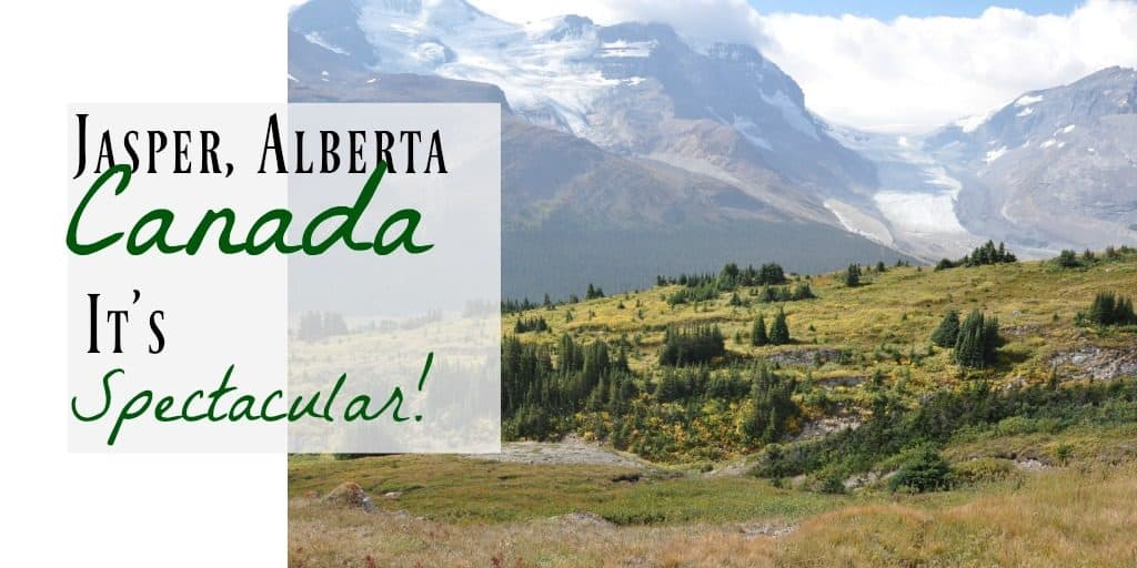 Jasper National Park ~ What You Need to Know 2