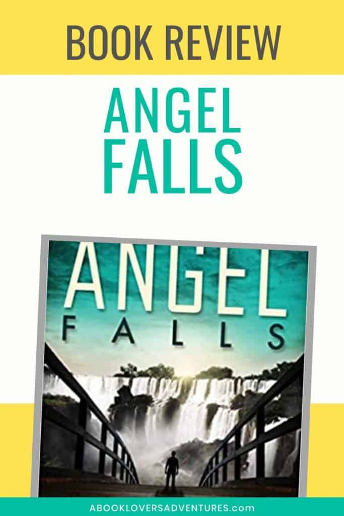 book review of Angel Falls by Connie Mann