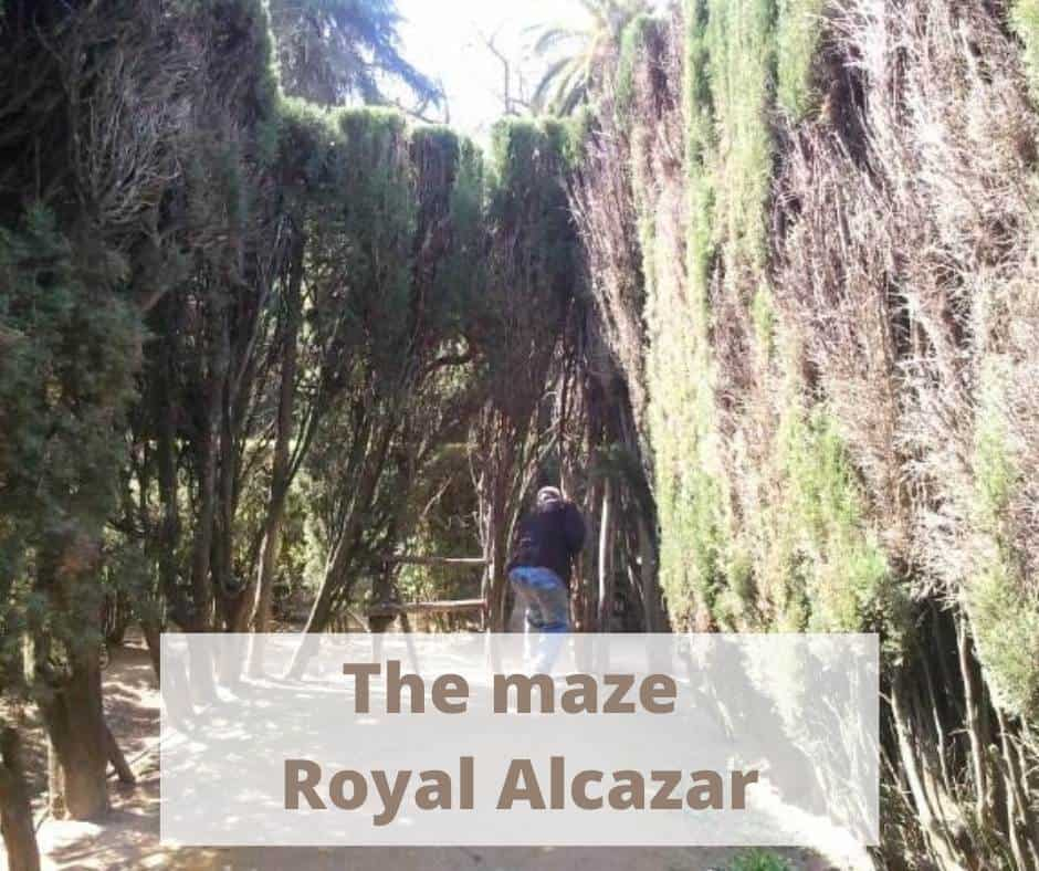 The maze in the gardens of the Royal Alcazar palace in Seville