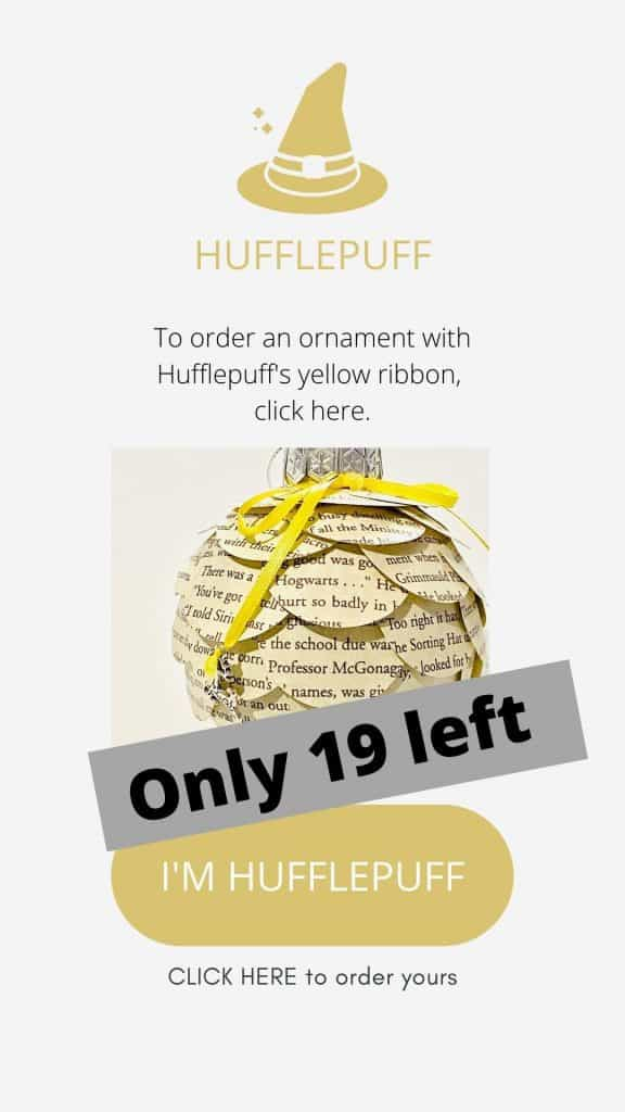 Welcome, Harry Potter friends... 18